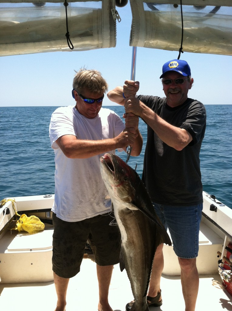 Cobia fishing atlantic beach nc emerald isle nc for Fishing report emerald isle nc